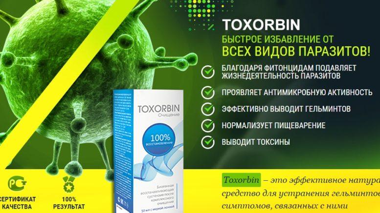 Действие препарата Токсорбин на схеме