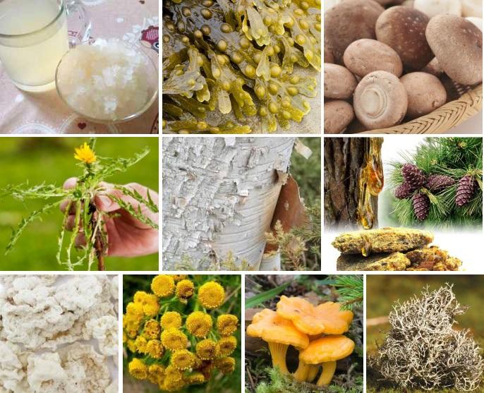 Разные природные компоненты