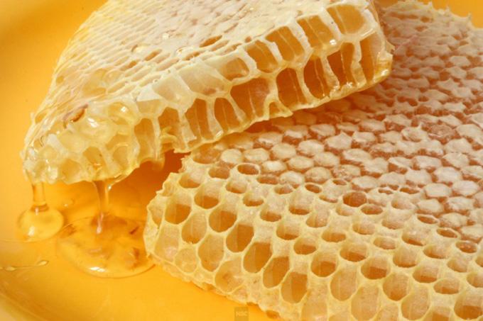 Фото медовых сот крупным планом