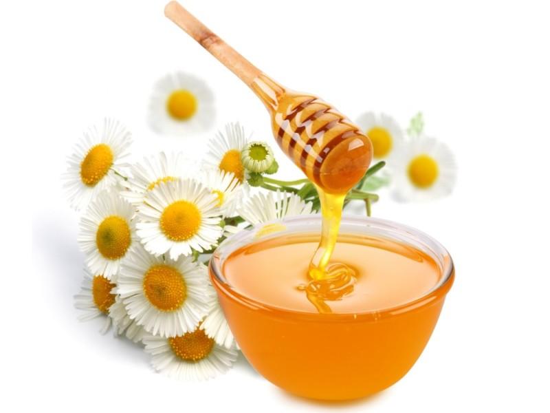 Фото меда в блюдце и цветков ромашек