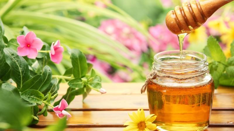 Как легко определить, какой мед вы купили — настоящий или поддельный