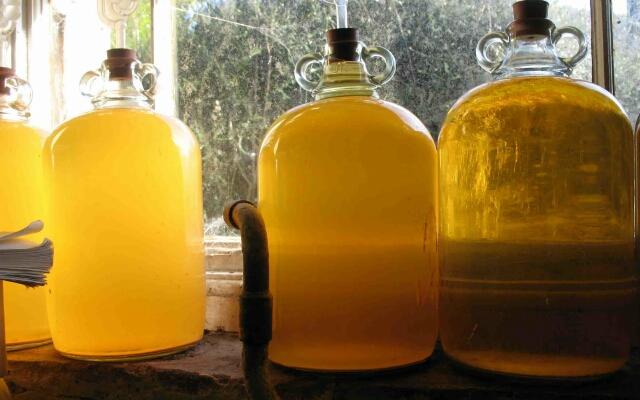 Рецепты домашнего самогона из меда