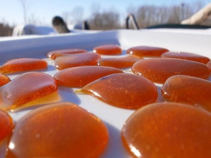 Фото медовых лепешек