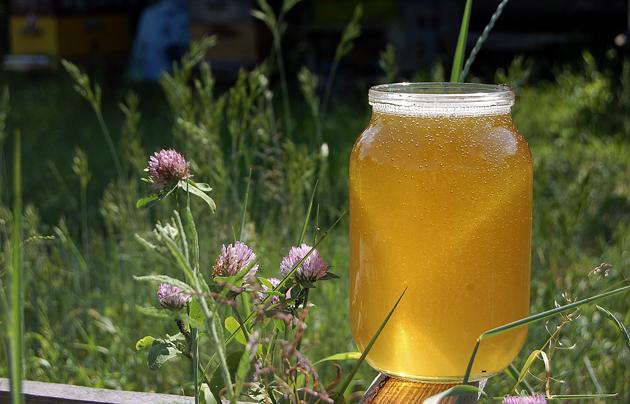 Фото первого жидкого меда