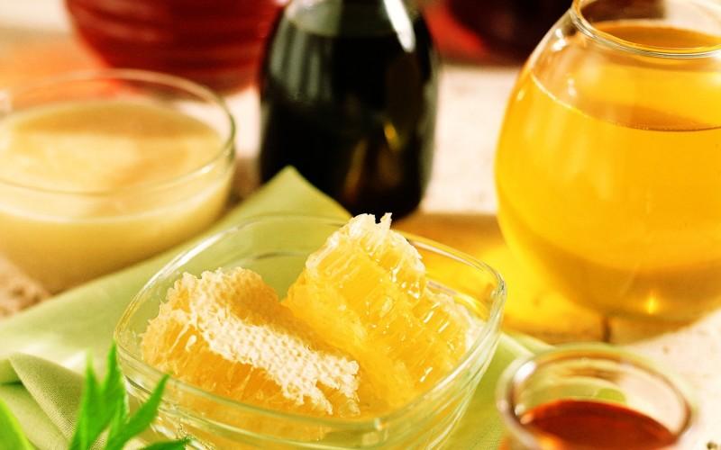 Мед из бархата амурского — редкий лечебный эликсир