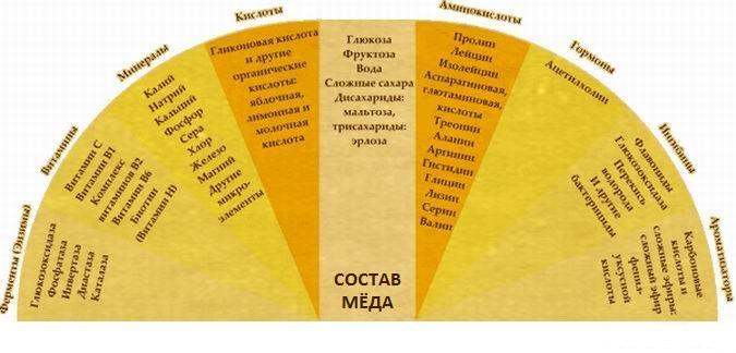 Фото таблицы с витаминным составом