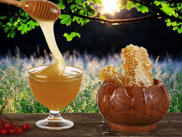 Фото засахаренного майского меда