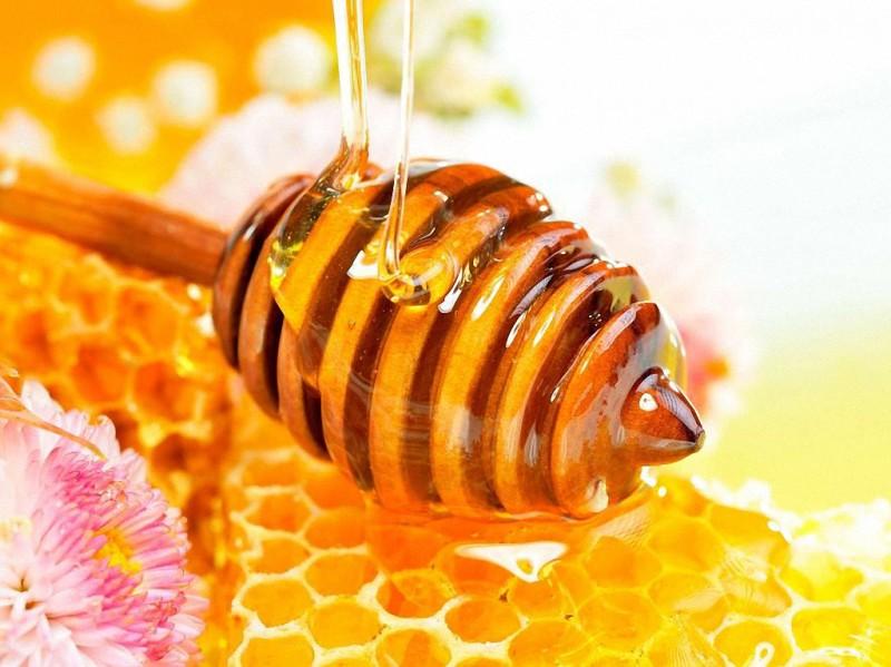 Фото ложки для меда