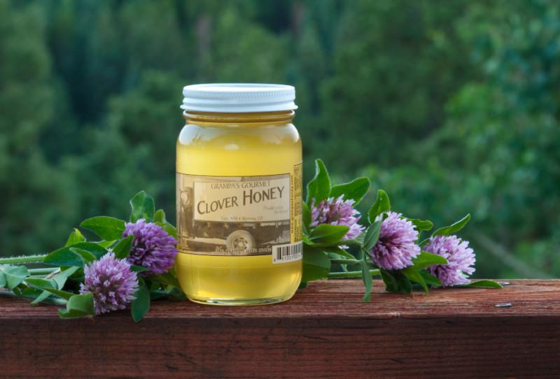 Вкусный и полезный клеверный мед