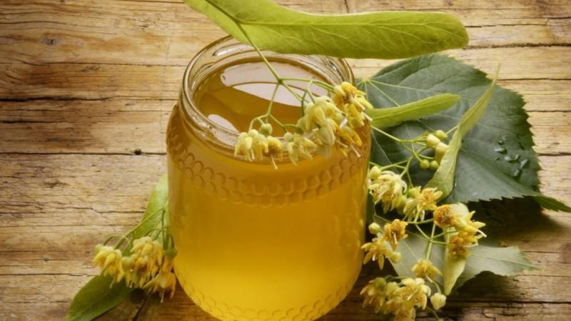 Невероятно полезный и распространенный — мед с липы
