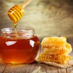 Фото жидкого меда в баночке и медовых сот