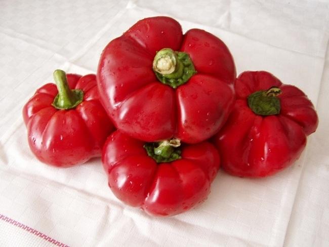 Красные молдавские гогошары для заготовки