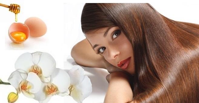 Медовая маска с яйцом — укрепление и питание сухих волос