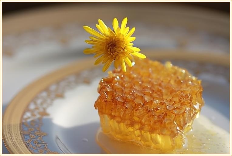 Кусочек медовых сот на блюдце