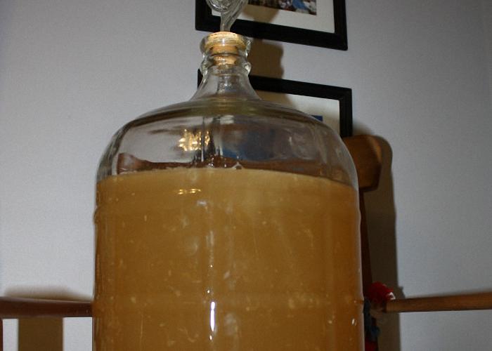 Медовуха в бутылке в процессе брожения