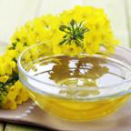 Рапсовый мед с цветущим растением