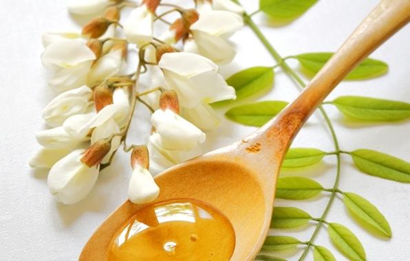 Цветки белой акации и мед в ложечке