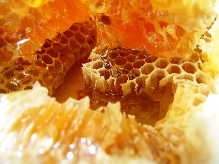 Медовые соты с прополисом