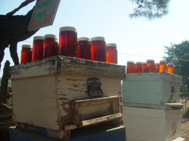Банки с готовым пчелиным продуктом