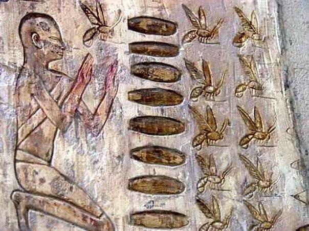 Древнее изображение человека и насекомых