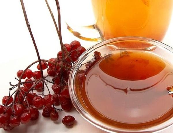 Веточка сушеной калины и мед