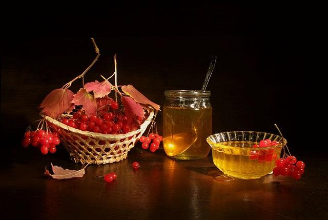 Натюрморт калины с медом