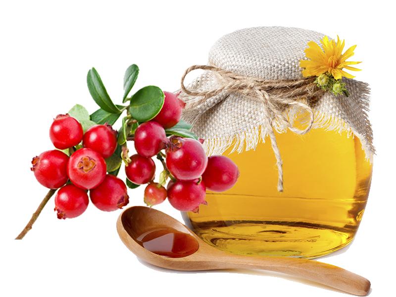 Ароматное наслаждение зимой — брусника с медом