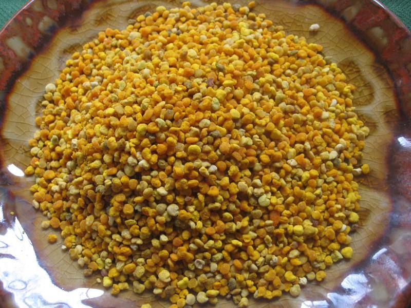 Сухой пчелиный продукт в тарелке
