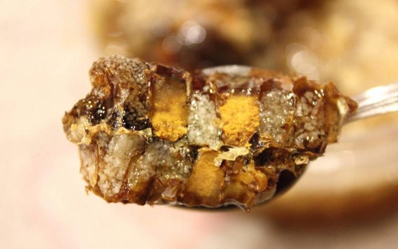 Пчелиный хлеб или все о пользе перги