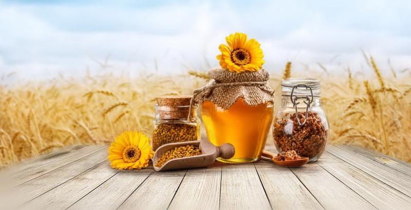 Медовая перга — вкусно и полезно