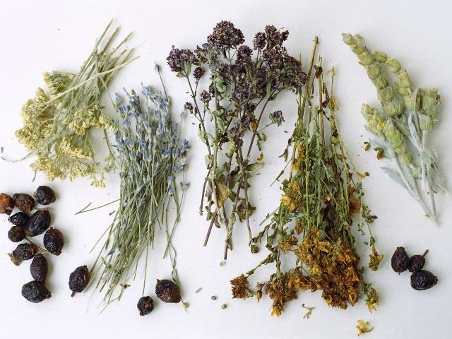 Лекарственные сушеные травы