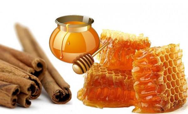 Корица и мед в сотах на белом фоне