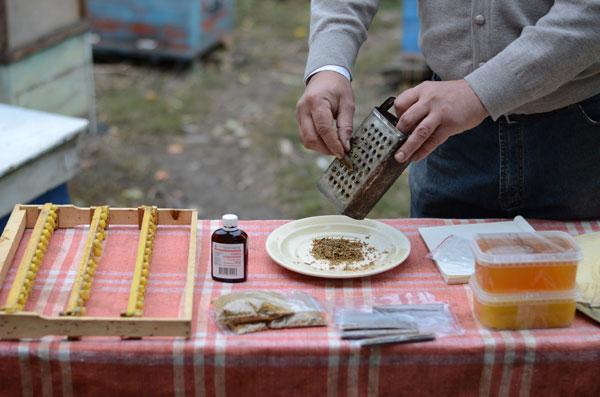 Приготовление лекарства на основе прополиса