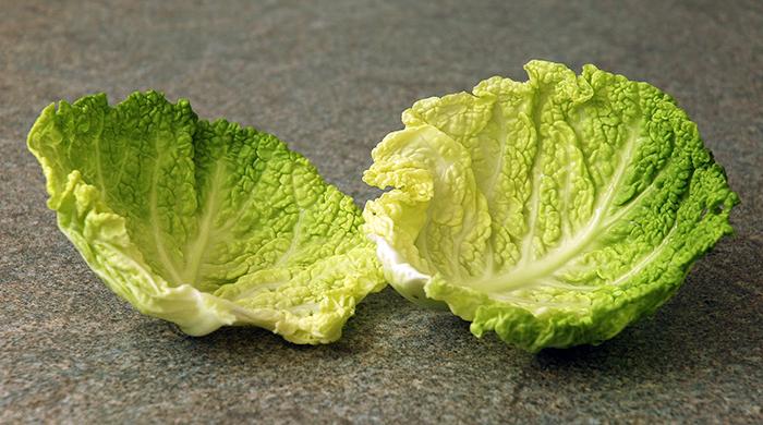 Два капустных листа