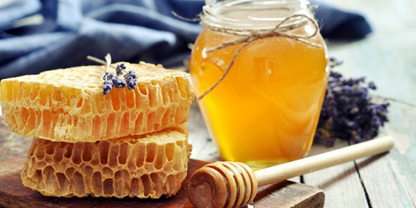 Пчелиные соты для похудения