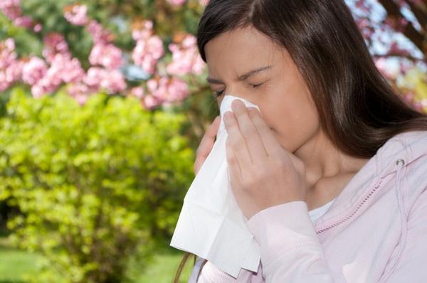 Аллергия на мед: миф или реальность?