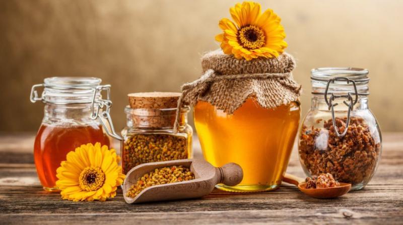Как применять прополис, его лечебные свойства и народные рецепты